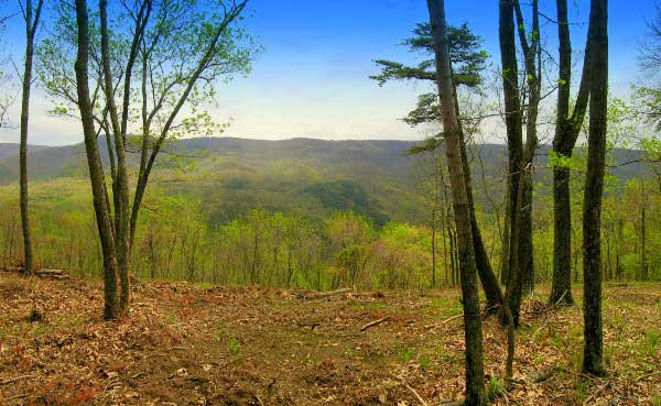 Ashton Woods WV Lot               191