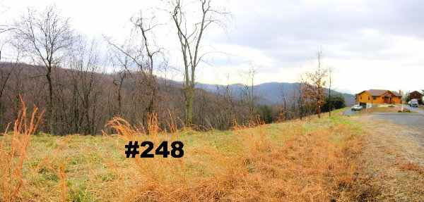 Ashtion Woods WV Lot               248