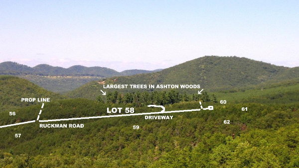 Ashton Woods Lot             58